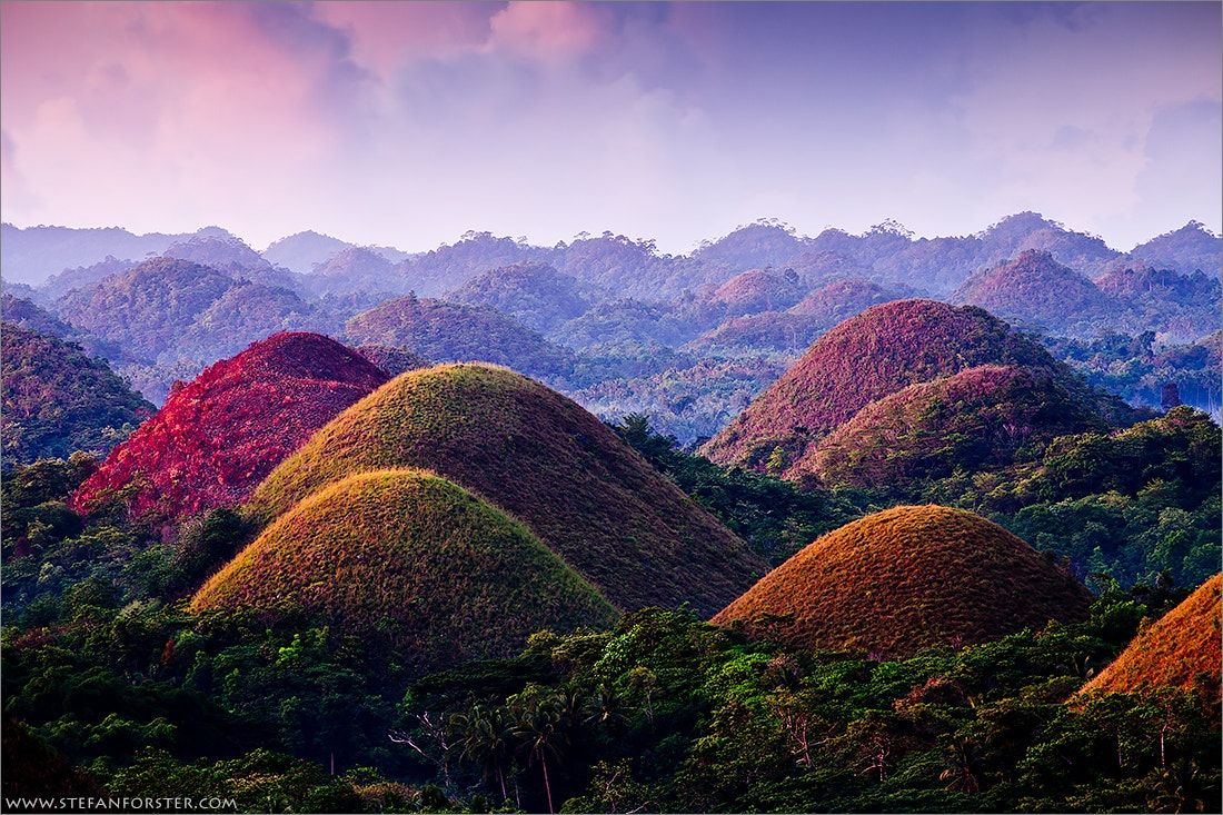 Bohol Philippines - the Chocolate Hills ... | Magical Forest ...