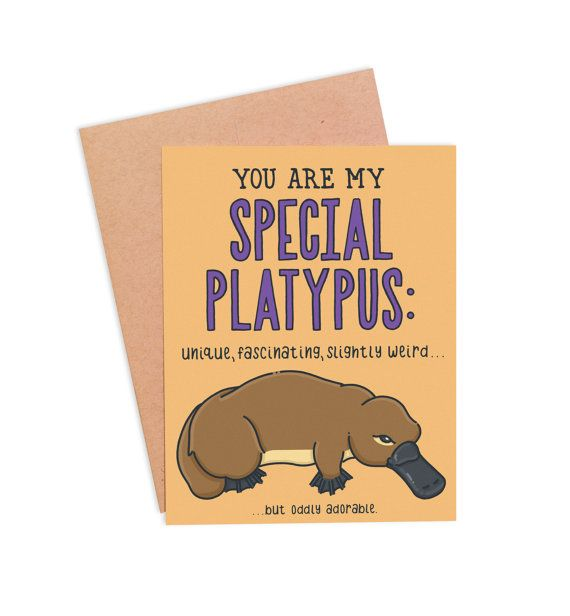 Valentine Platypus Folding Card