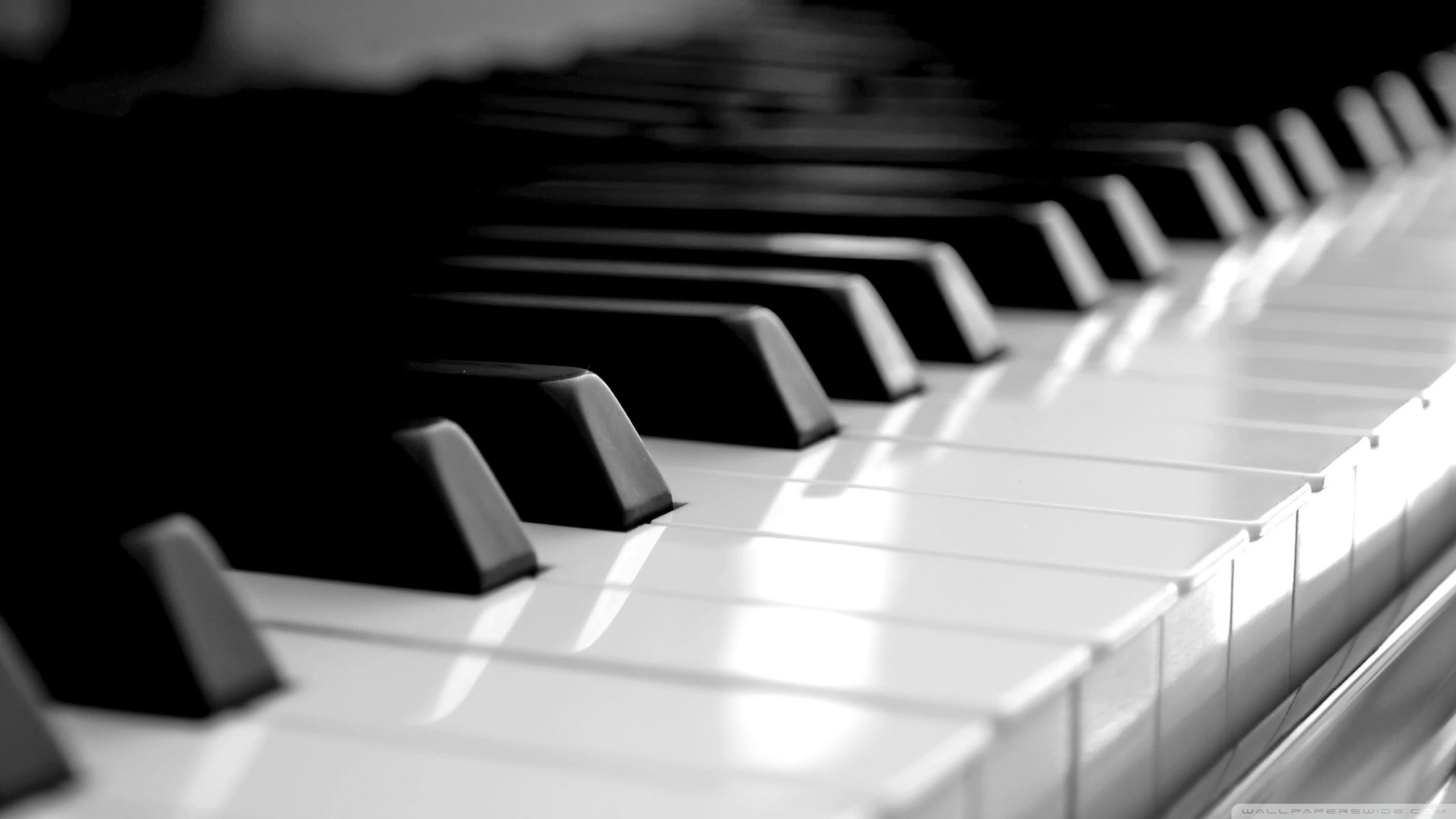 Download Piano Keyboard Hd Wallpaper Piano Instrumentos Musicais