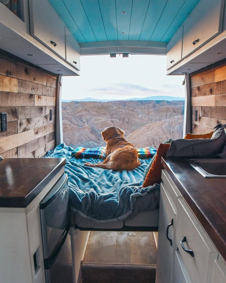 Wie man mit einem Hund in einem DIY-Wohnmobil-Umbau lebt. Packen Sie das Nötigste für Ihren Roadtrip ein und erfahren Sie, wie Sie beim Besuch von Nationalparks einen Sitter finden. Hinweise zur Kontrolle der Temperatur. Tipps und Tricks für Abenteuerreisen in einem Wohnmobil, Wohnmobil, Wohnmobil oder Satte... #das #DIYWohnmobilUmbau #einem #Hund #lebt #man #mit #Nötigs #Packen #Sie #van lif #van life diy how to build #van life diy ideas #van life diy interiors #van life diy projects #Wie