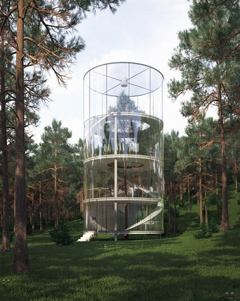 Tree House in Nature