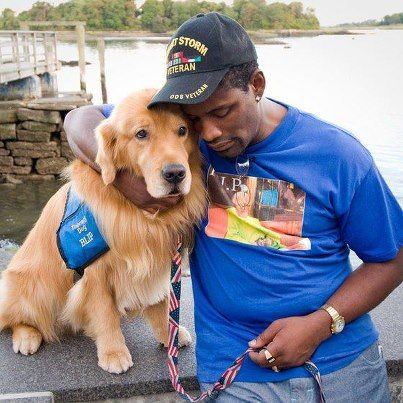 Therapy Dog That Provided Care At Theater Shooting Trial Now