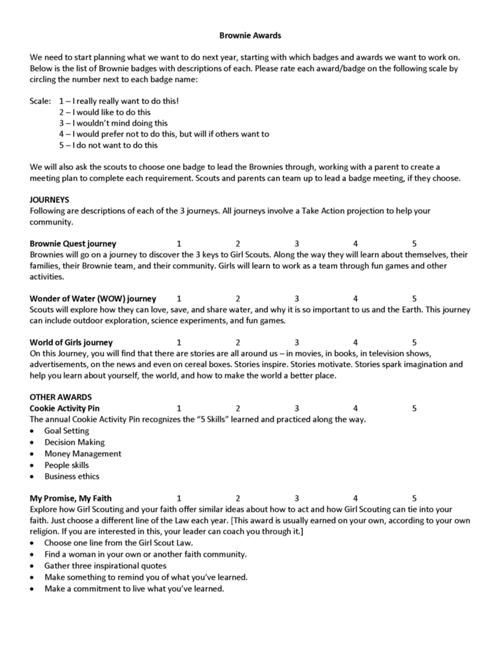 Brownie Badges - evaluation form in word