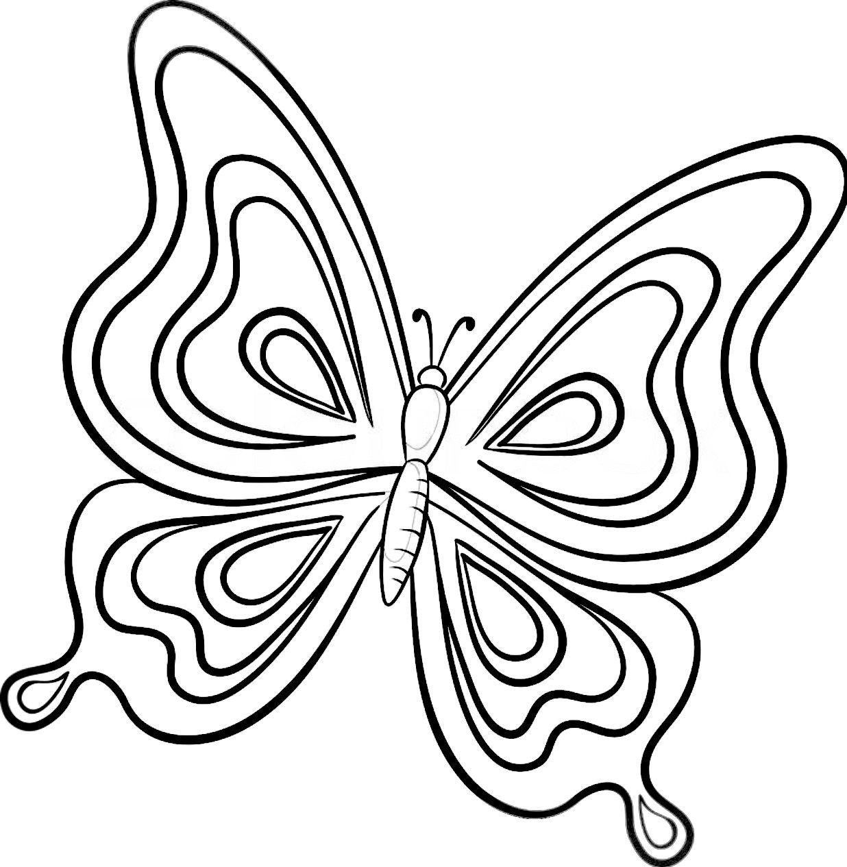 Ausmalbilder Zum Ausdrucken Schmetterling : Pin Von Swoon Are You Worthy Jewelry Co Auf Color My World