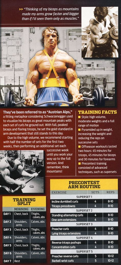 Train Like a Legend | Fitness | Workout, Arnold workout, Fitness