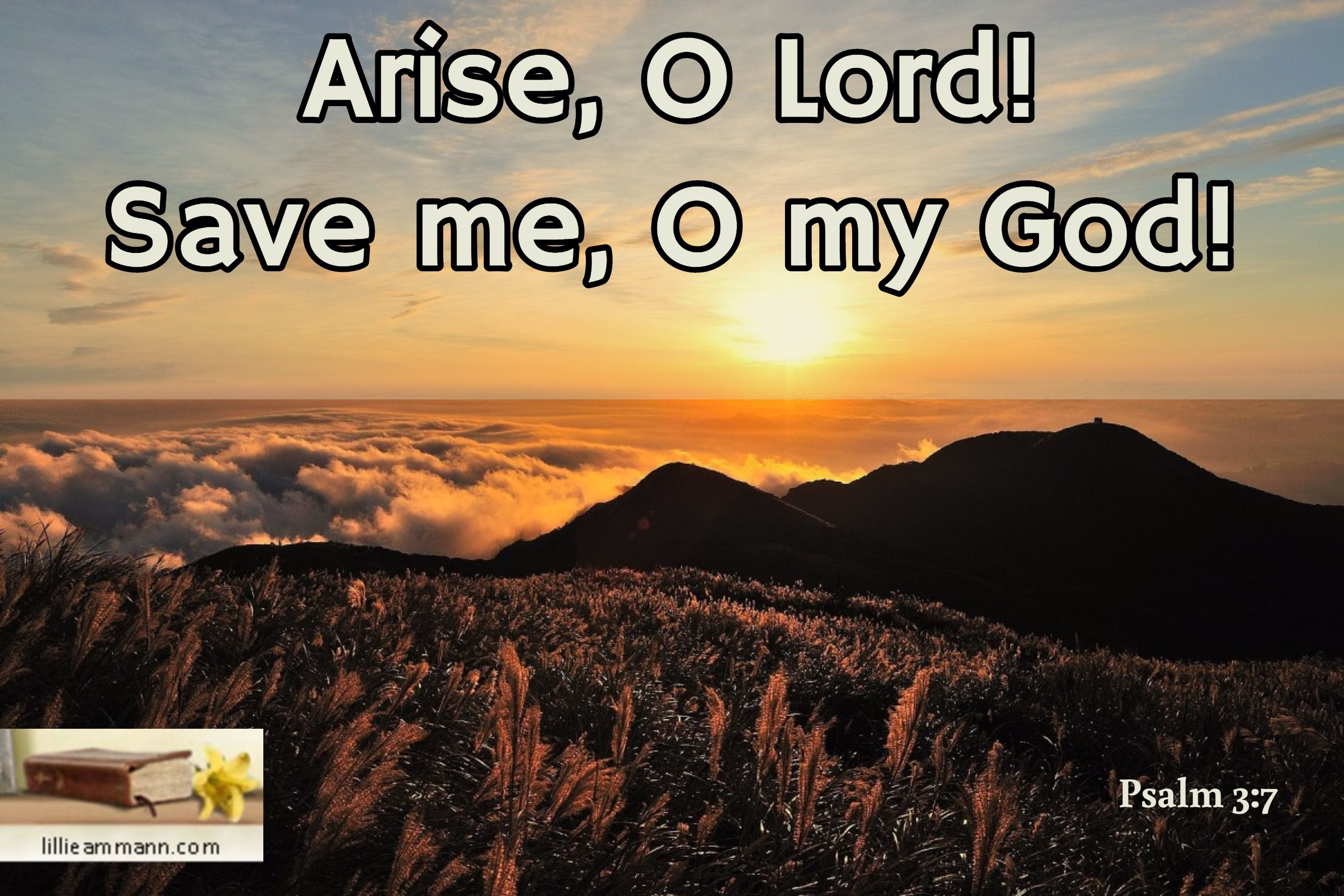 Image result for arise lord and save me