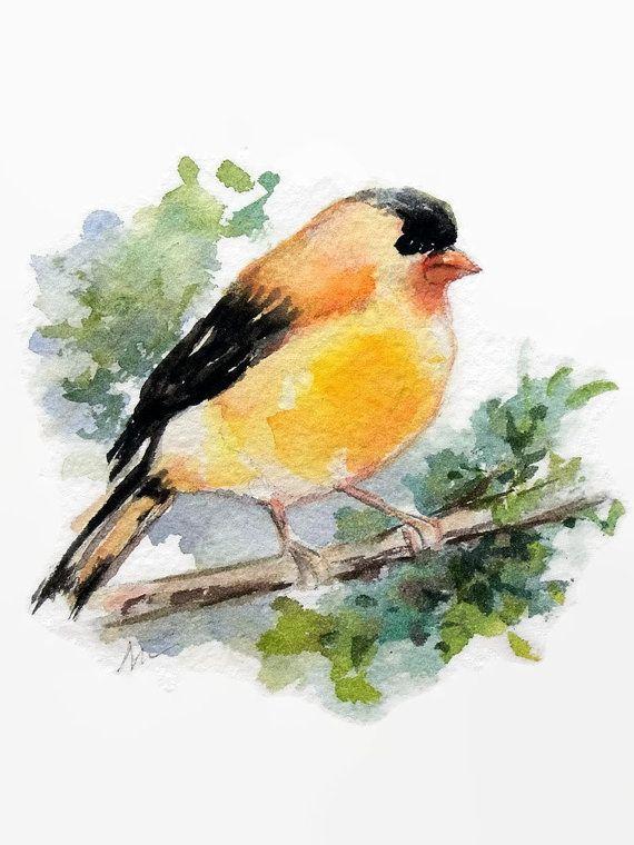 Original Watercolor Yellow Bird Illustration Gold Finch Painting