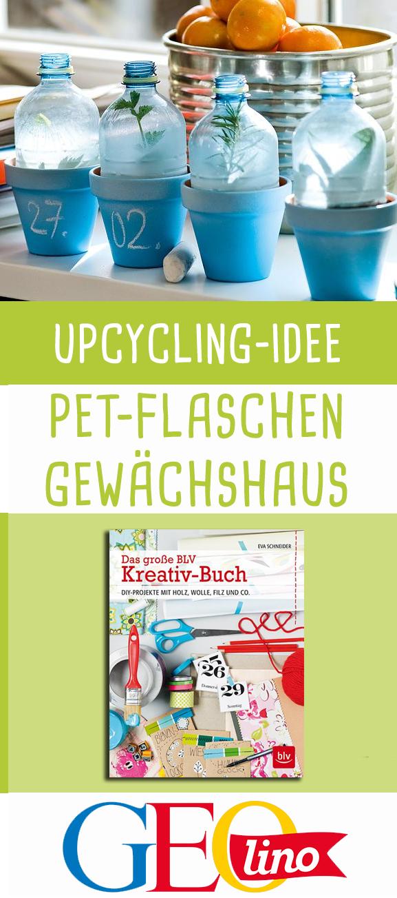 Gewächshaus aus PET Flaschen #gartenrecycling