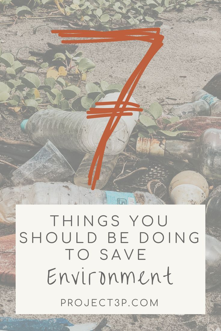 7 Things You Should Be Doing to Save the Environment | Eco ...
