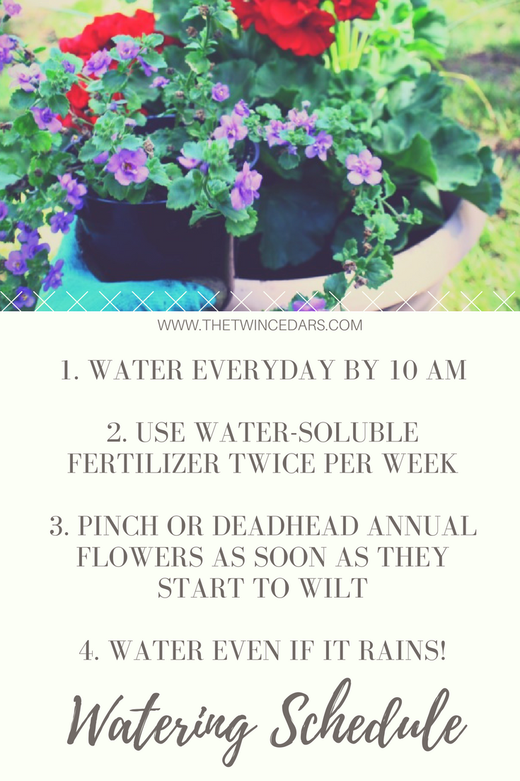 Want The Best Blooms Follow These Easy Tips For Outdoor Planters Garden Care Easy Garden