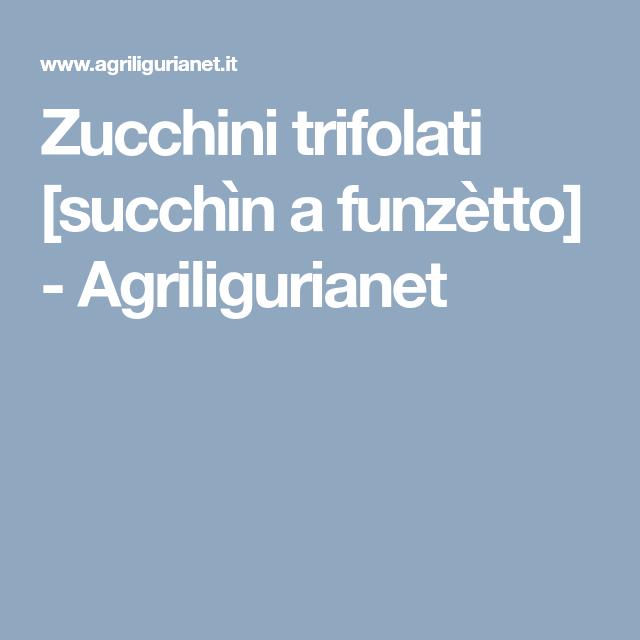 Zucchini trifolati [succhìn a funzètto]