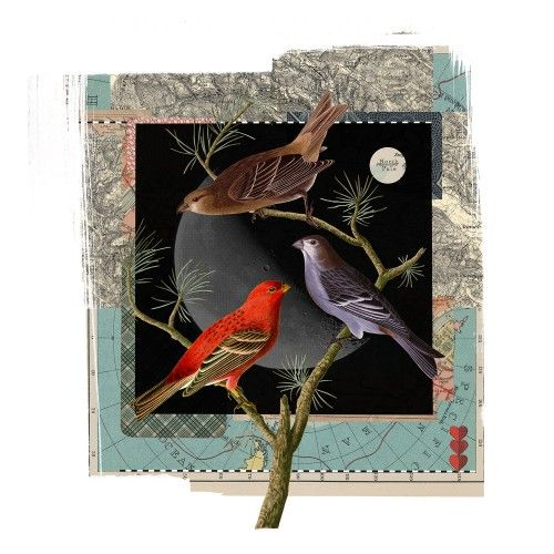 James Bates | Moonbirds| Limited Edition Print| Scream Editions| Giclee Print| Online Gallery