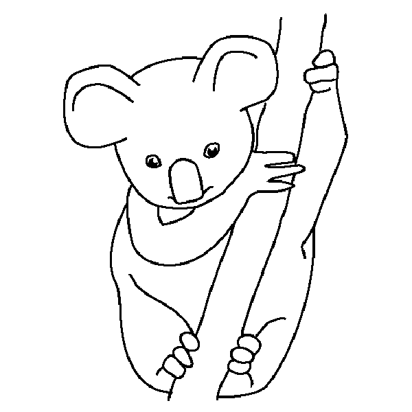 Koala Coloring Page | Coloring Pages | Pinterest