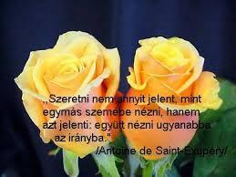 szép idézetek szeretetről szép idézetek a szeretetről   Google keresés | Plants, Rose, Flowers