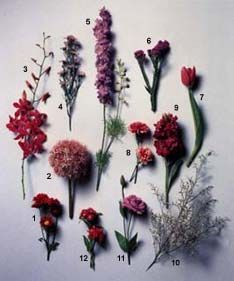 Pin On Floral Arrangement