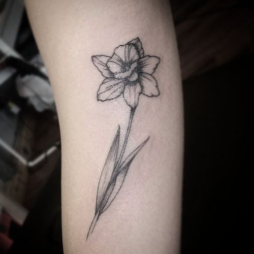 Black And White Daffodil Tattoo Daffodil Flower Tattoos Daffodil Tattoo Narcissus Flower Tattoos