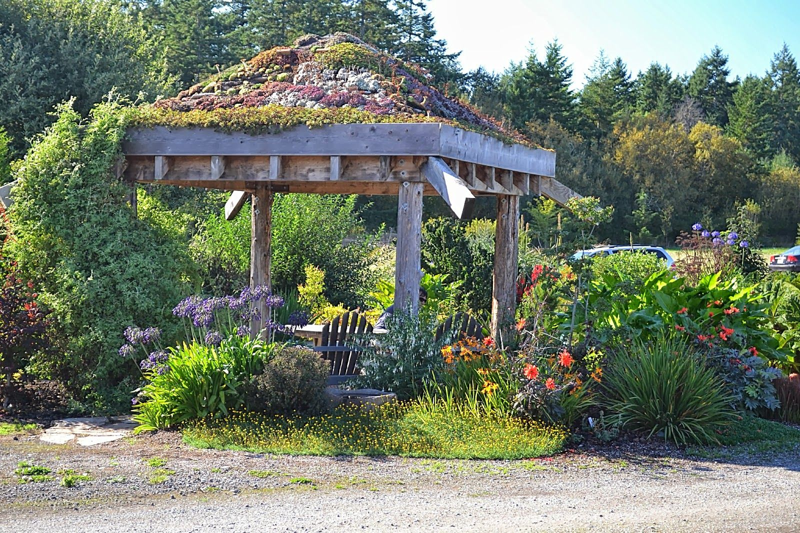 Gazebo With Living Roof