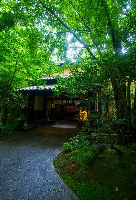 黒川温泉 旅館 山河 森の中に佇む隠れ宿 温泉 温泉 宿泊 旅館