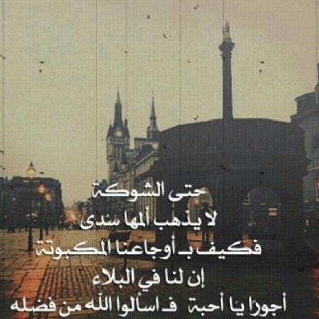 الحمدلله احتسب احزانك و آلامك عند الله Islam Quran Instagram Posts
