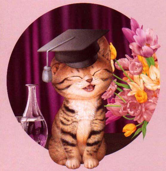 Поздравления с защитой диплома девушке картинки