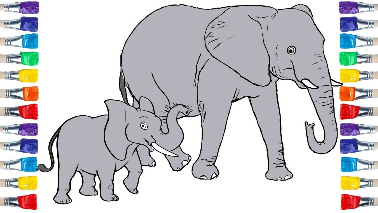 How To Draw An Elephant Family Draw Colour For Kids Elephant