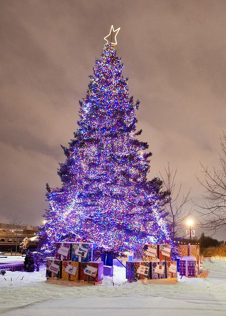 Vue De Sherbrooke Christmas Lights Christmas Tree Decorations Christmas
