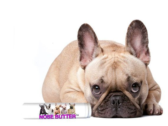 French Bulldog Original Nose Butter All Natural Handcrafted Balm