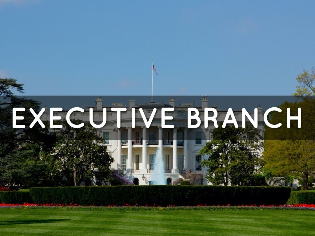 us executive branch of government Executive branch quiz  is a primary role of the executive branch in the united states a  policy is a responsibility of the executive branch of us government .