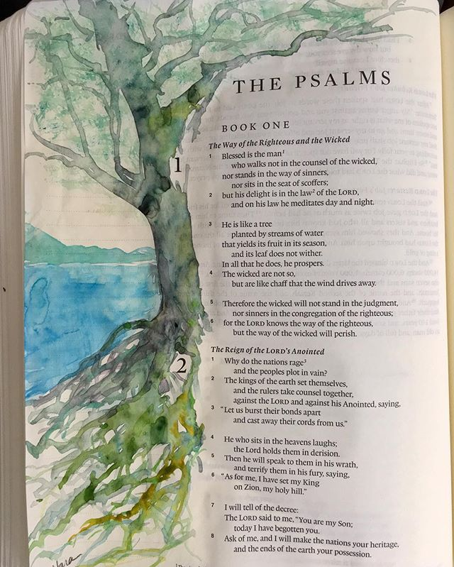 Psalm 1:1-3 Blessed is the man who walks not in the counsel of the wicked, nor stands in the way of sinners, nor sits in the seat of scoffers; but his delight is in the lawb of the LORD, and on his law he meditates day and night.  He is like a tree planted by streams of water that yields its fruit in its season, and its leaf does not wither. In all that he does, he prospers.  #dailybiblejournal #psalm1 #watercolor #bibleart #biblejournaling