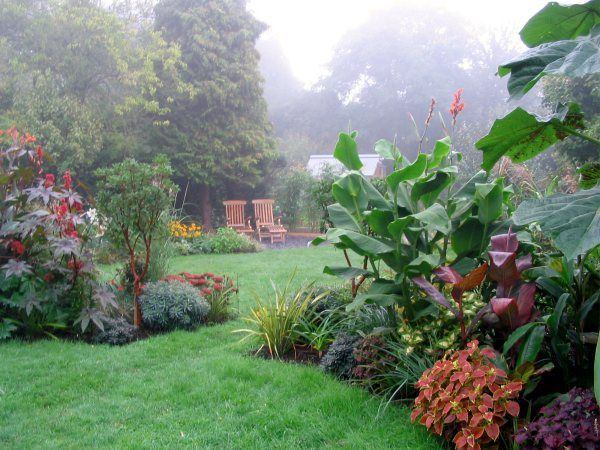 From lawn to lush in 12 months - the story of a garden transformation