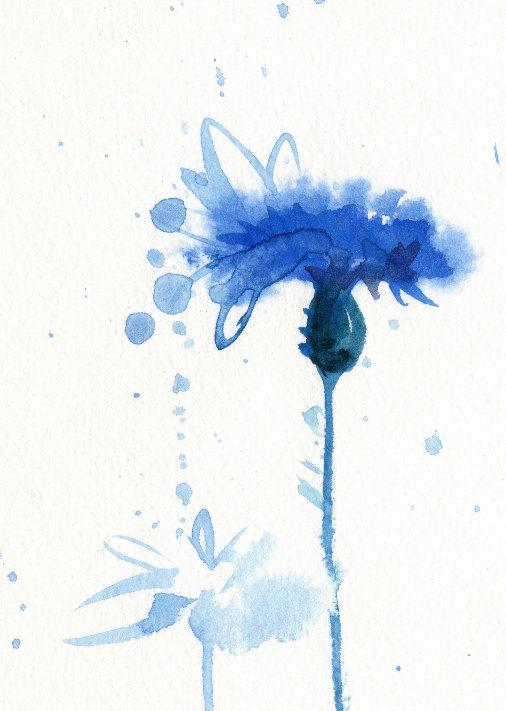 Aquarell Blume Blau Drucken Kornblume von AnellHappyWatercolor ...