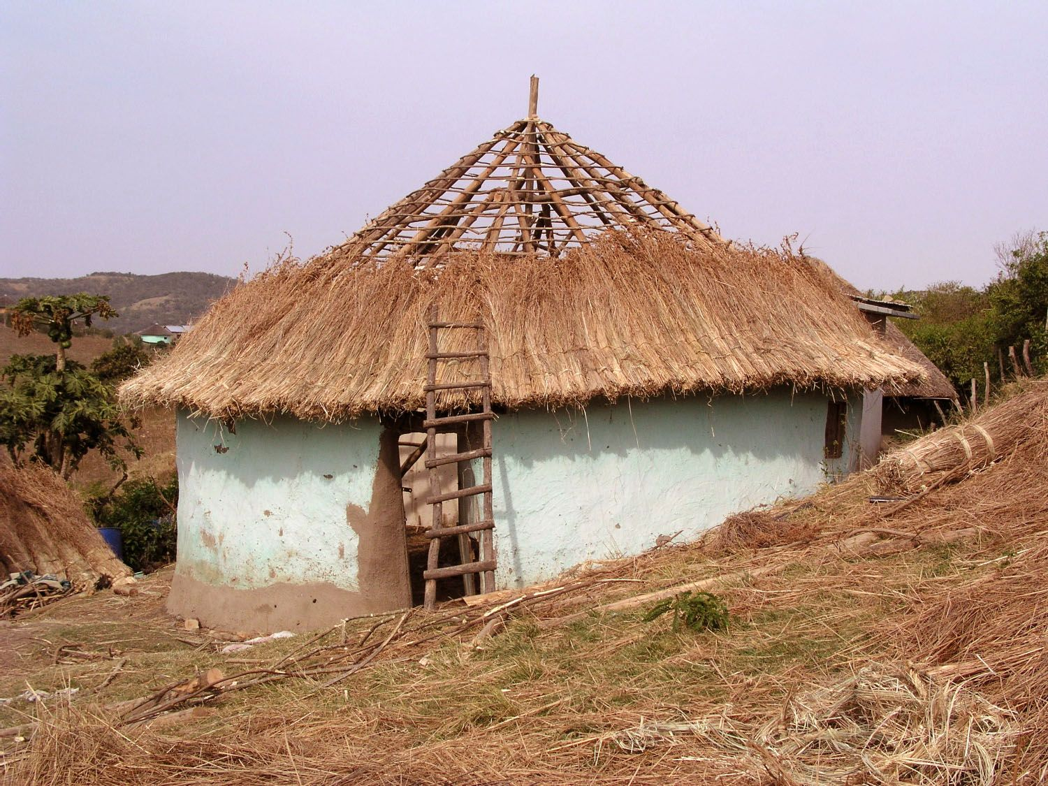 South africa rondavel round hut getting its traditional thatch roof note the pigment