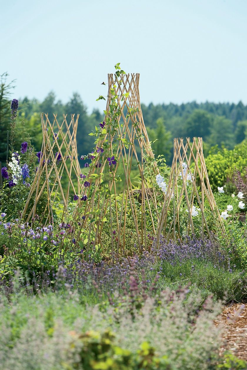 Our Willow Trellises Are Expandable And Can Be Used As A Decorative Barrier  Or To Add Structure To Flower Gardens Or Vegetable Gardens.