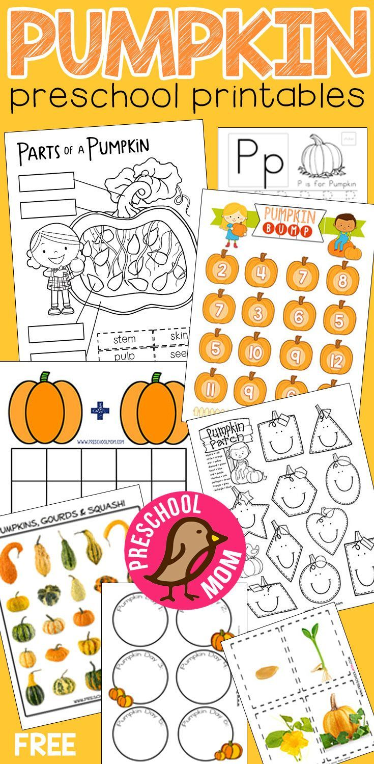 Pumpkin Preschool Printables Parts of a pumpkin