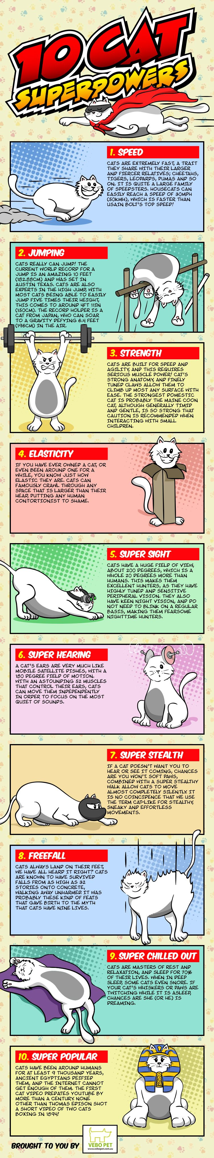 10 Cat Super Powers