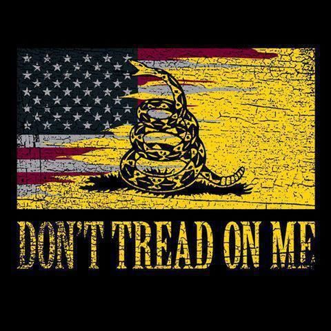 Page 1 Dont Tread On Me I Love America America