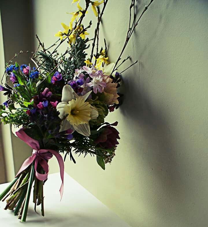 Derbyshire spring flowers