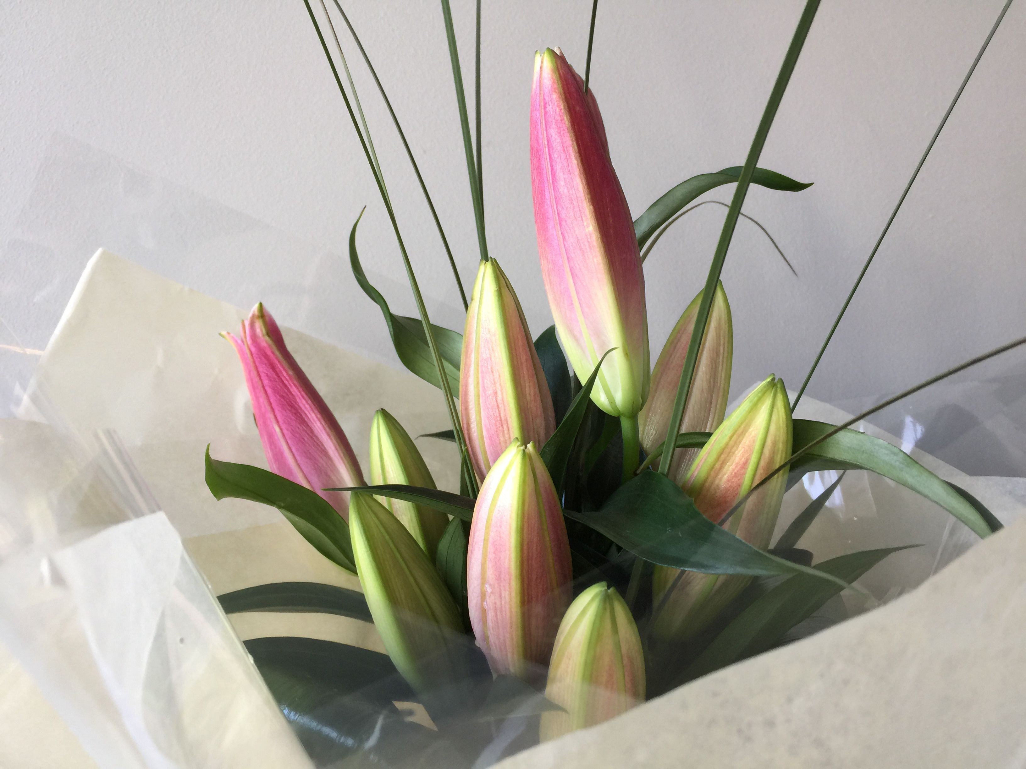 Pretty Little Flower Co Flower Shop Boldmere Florist Boldmere