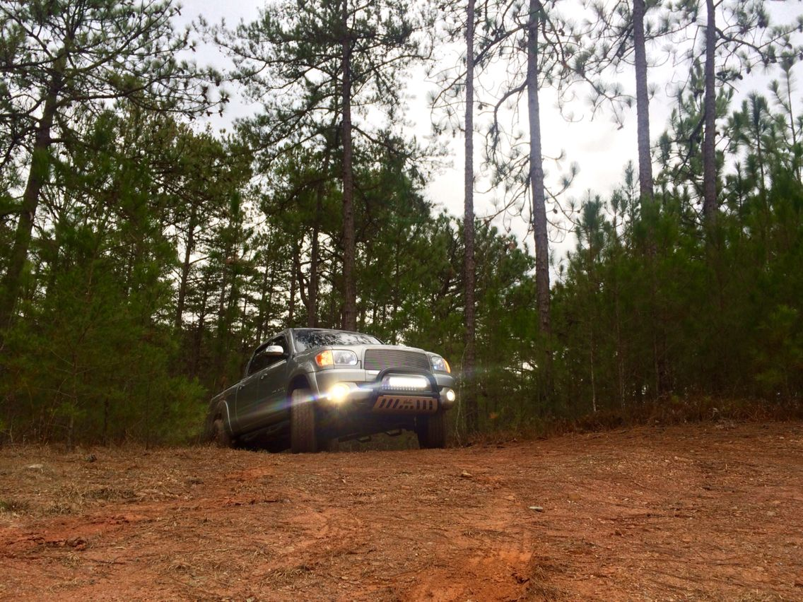 Out Of The Woods And To The Alabama Red Clay We Go