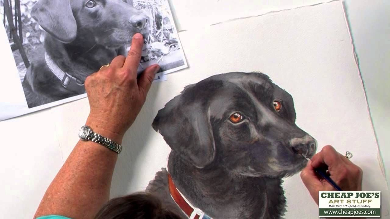 How To Paint A Dog S Face With Watercolor Artist Nancy Couick Part