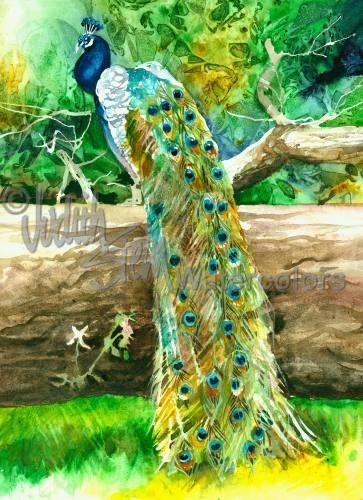 "Peacock Zoo Farm Bird, Pea Hen, Green, Blue, Turquoise, Tree Stump, Watercolor Painting Print, Wall Art, Home Decor, "" Proud as a Peacock"""