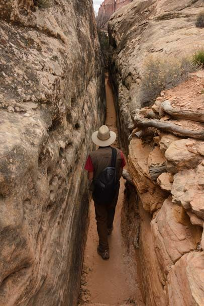 Slot canyon hikes in canyonlands whats a donkey in poker