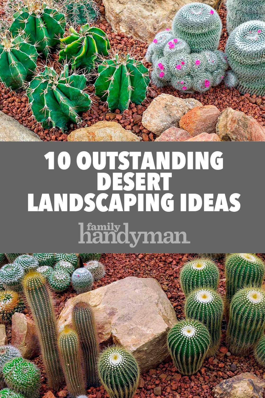 10 Outstanding Desert Landscaping Ideas | Desert ... on Backyard Desert Landscaping Ideas On A Budget id=18930