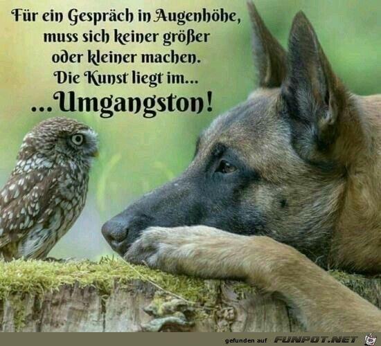 New Funny Deutsch Bilder 10