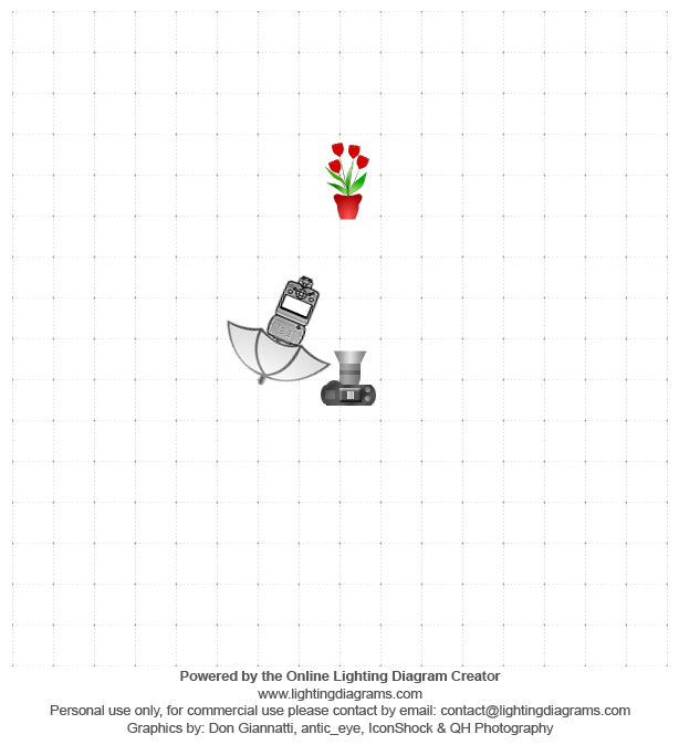 Lighting diagram 1372794617 easy and elegant ring shots in under 3 lighting diagram 1372794617 easy and elegant ring shots in under 3 minutes ccuart Gallery