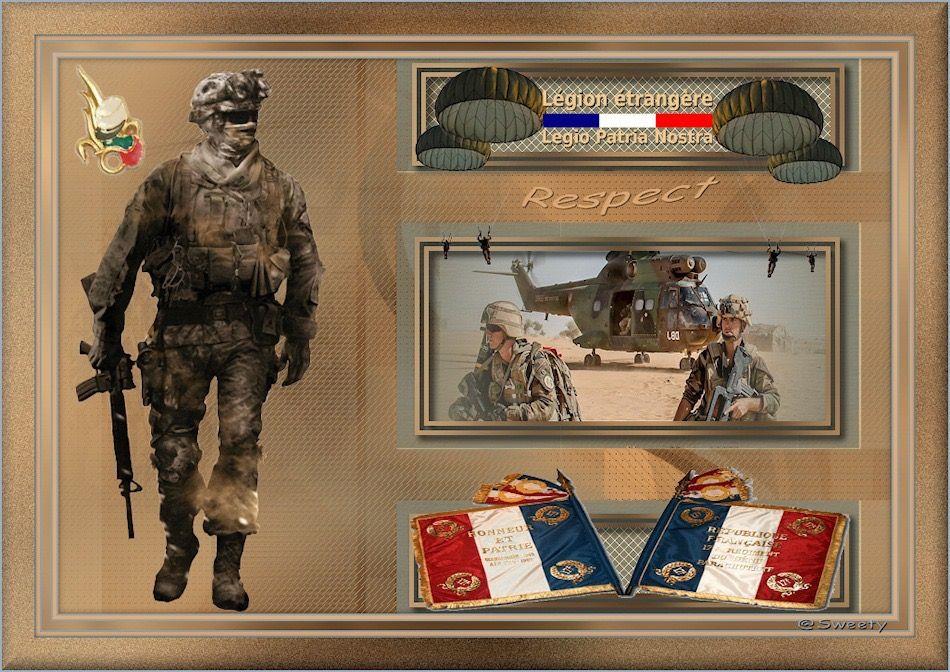 France French Foreign Legion 6th Regiment Combat Diver /& Parachutist Légion Etra