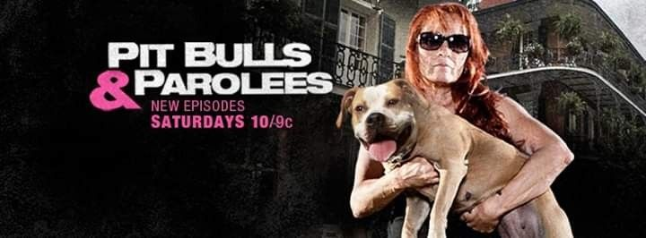Pin On Pitbulls Parolees Tia