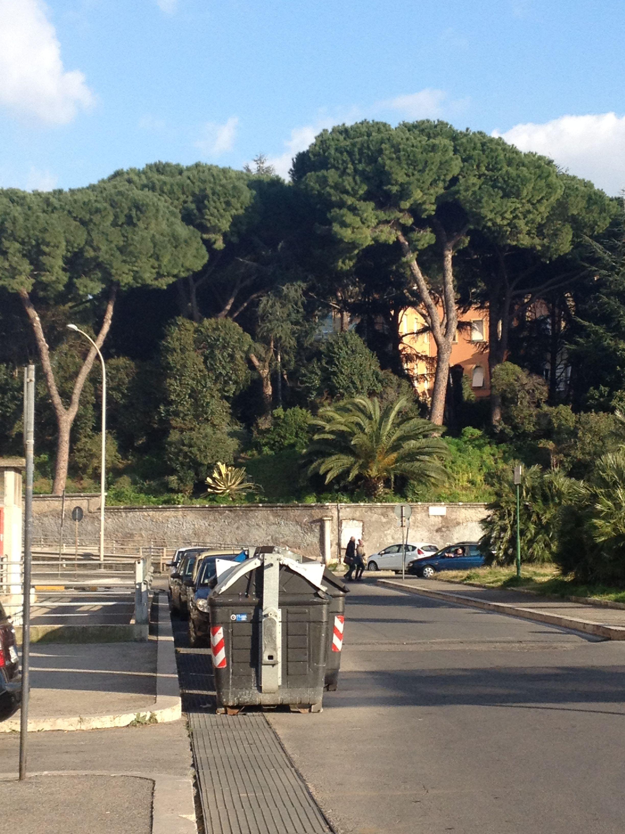 #Lezione #Inglese #domicilio #preparazione #esami #IELTS #Laureati #CELTA #DattiIlmeglio #Trionfale #Roma 063823338185