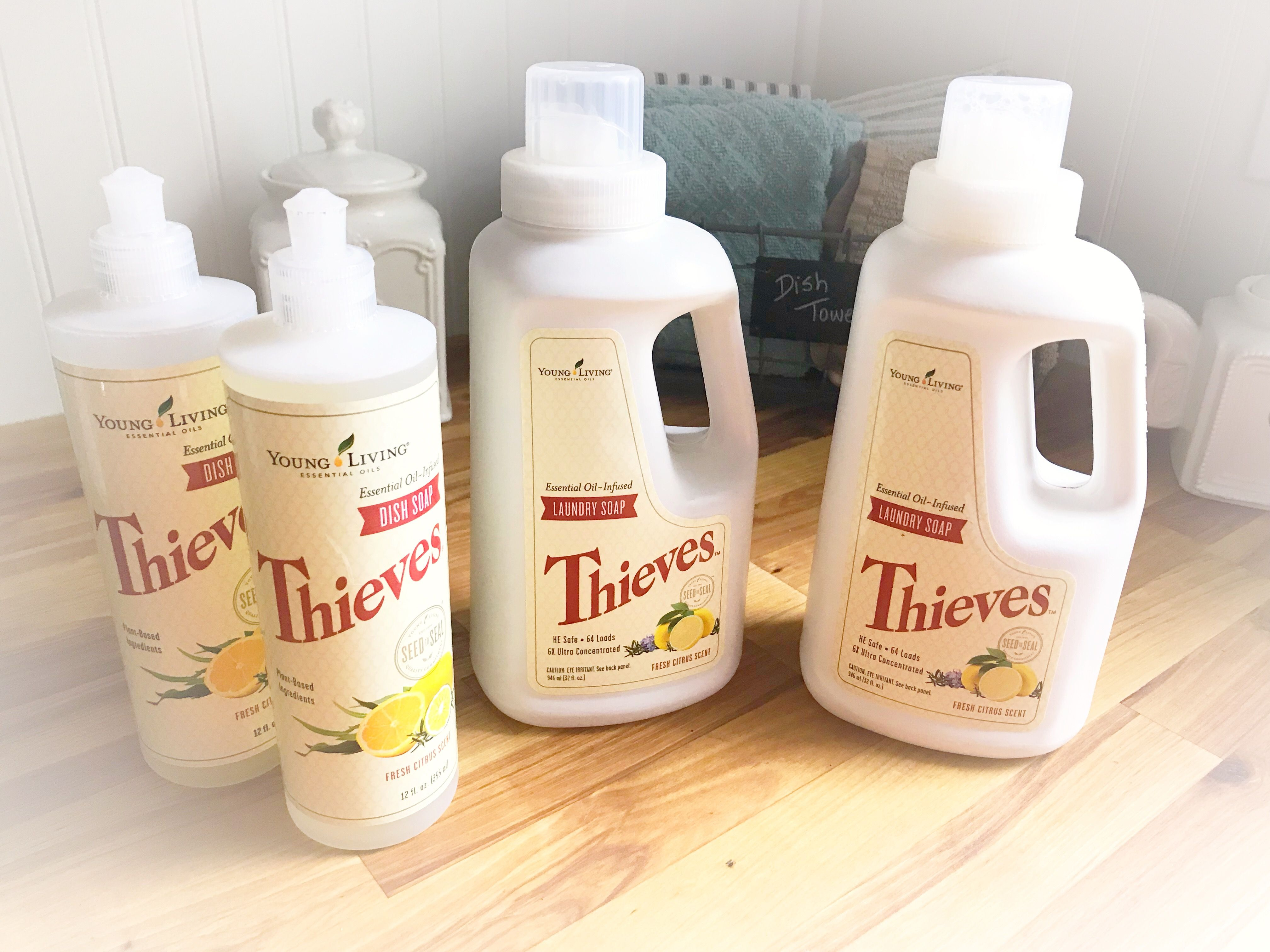 Just Split One Thieves Laundry Soap Into Two And One Thieves Dish