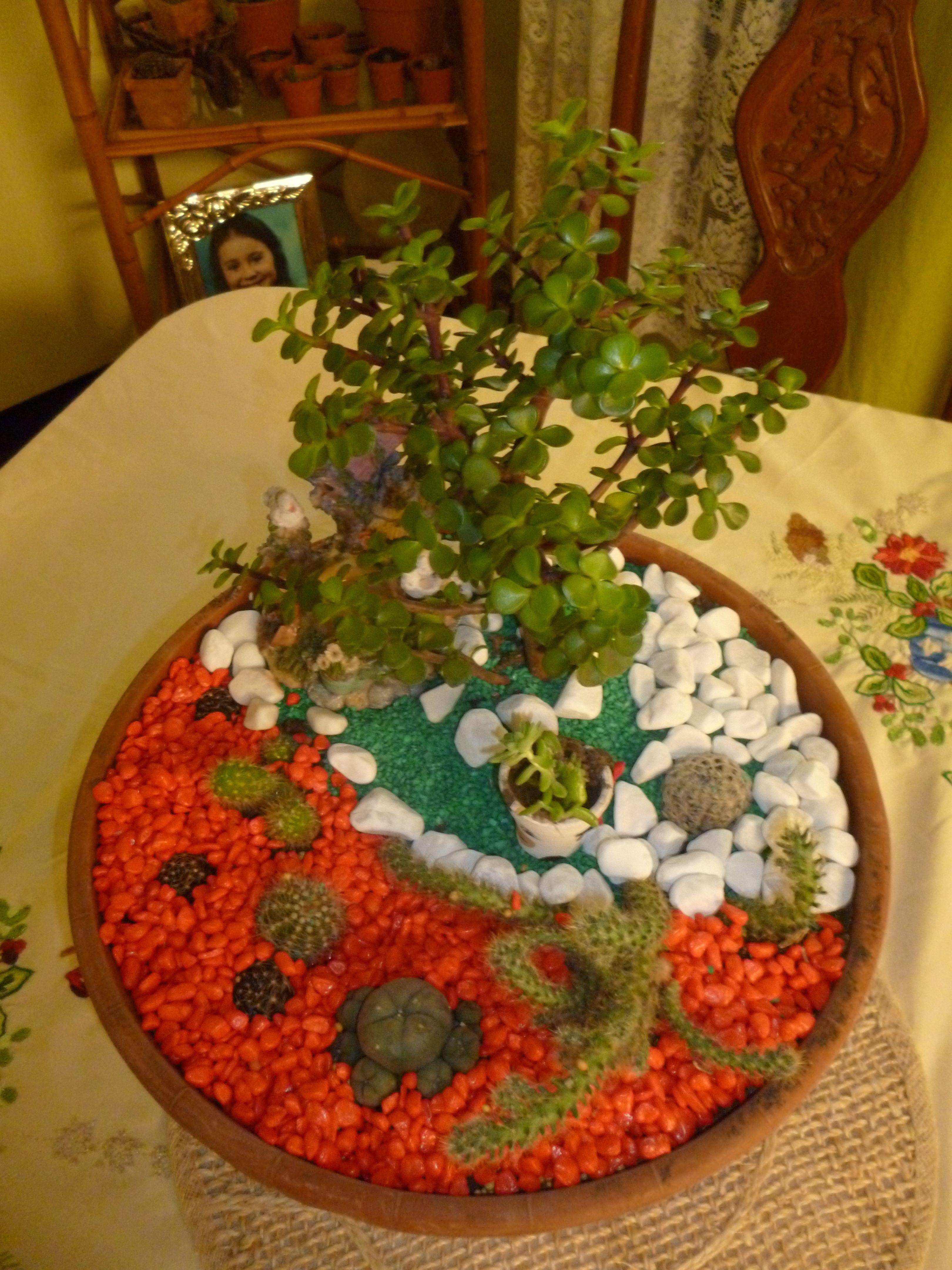 Mi primer jardin miniatura huerta y jardin so ados for Ideas para mi jardin